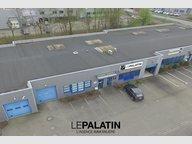 Fonds de Commerce à vendre à Geispolsheim - Réf. 5140257