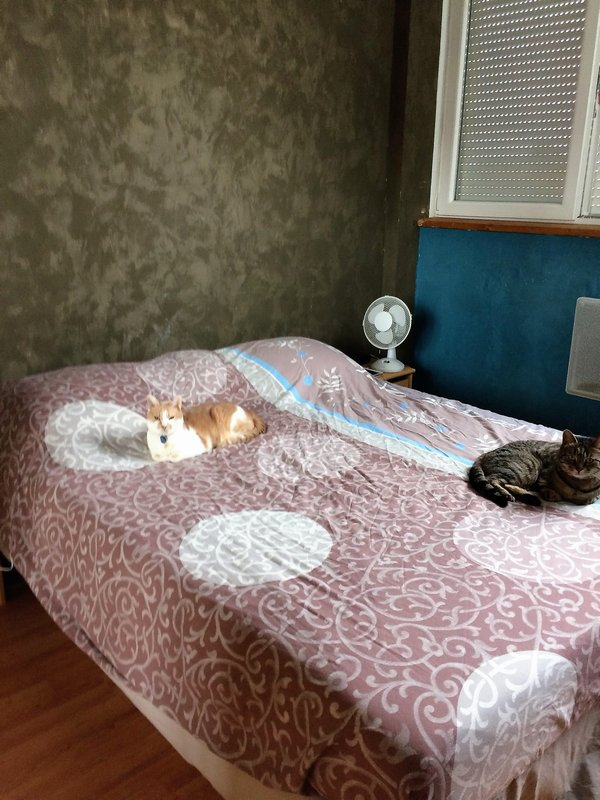 acheter appartement 2 pièces 56 m² guénange photo 4