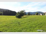 Terrain constructible à vendre à Gérardmer - Réf. 7067969