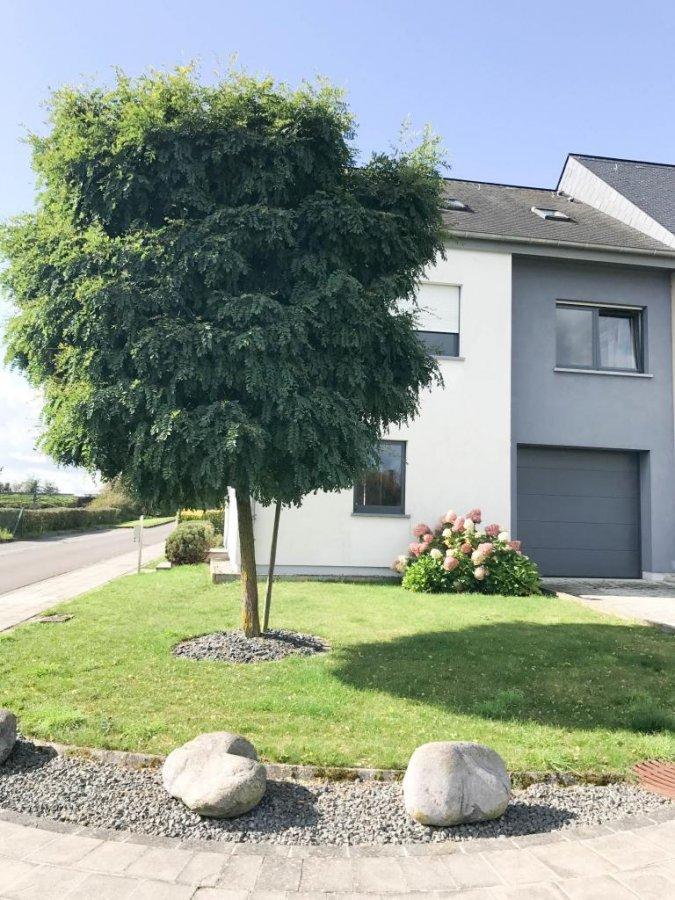louer maison individuelle 4 chambres 180 m² moutfort photo 4