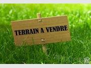 Terrain constructible à vendre à Phalempin - Réf. 6064465