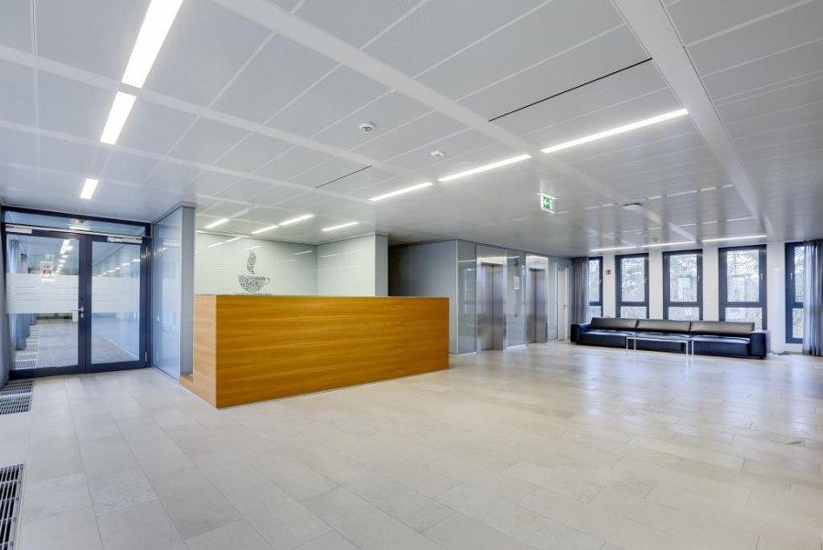 louer bureau 0 chambre 2448 m² luxembourg photo 3