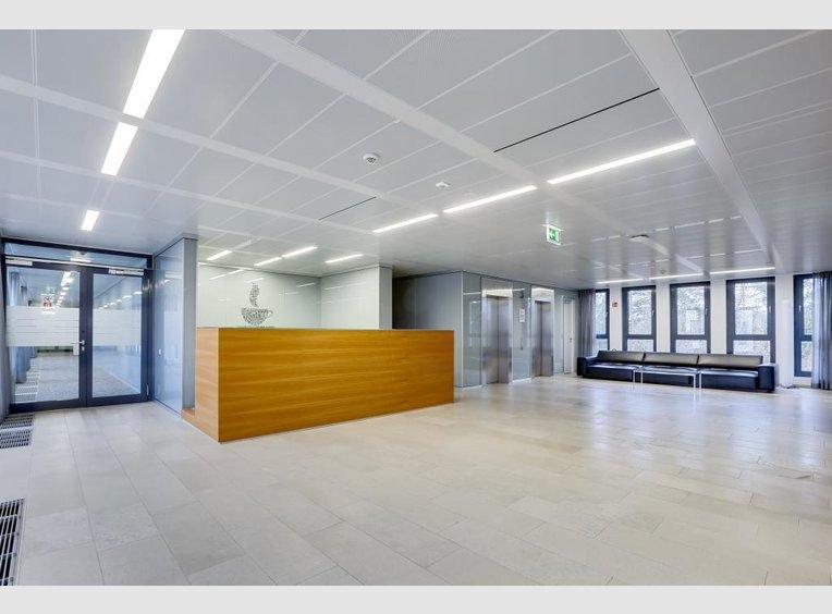 Bureau à louer à Luxembourg (LU) - Réf. 6618449