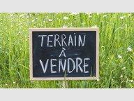 Terrain constructible à vendre à Sommerviller - Réf. 7082593