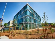 Bureau à louer à Luxembourg-Gasperich - Réf. 6895201