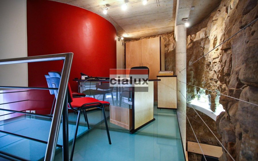 louer local commercial 0 chambre 60 m² luxembourg photo 6