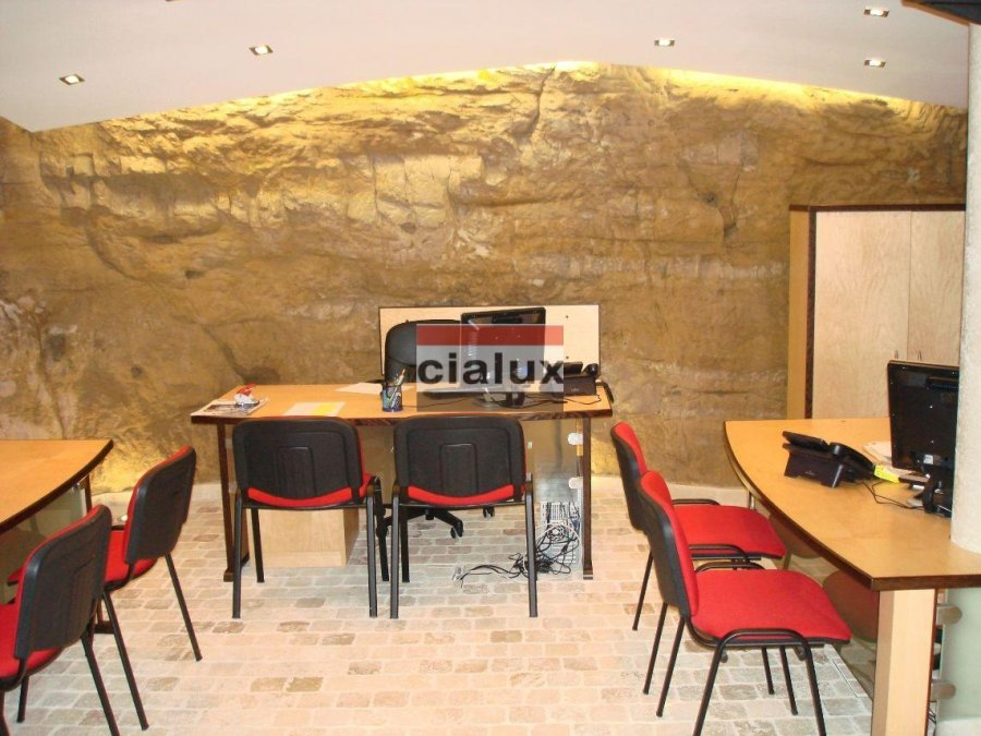 louer local commercial 0 chambre 60 m² luxembourg photo 7