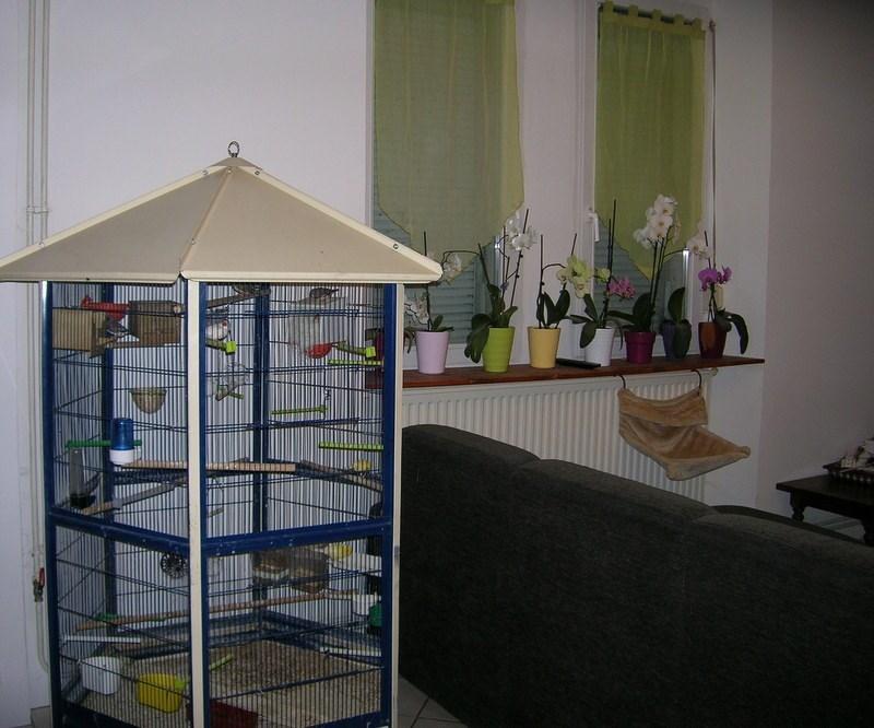 acheter maison 7 pièces 194 m² esnes-en-argonne photo 3
