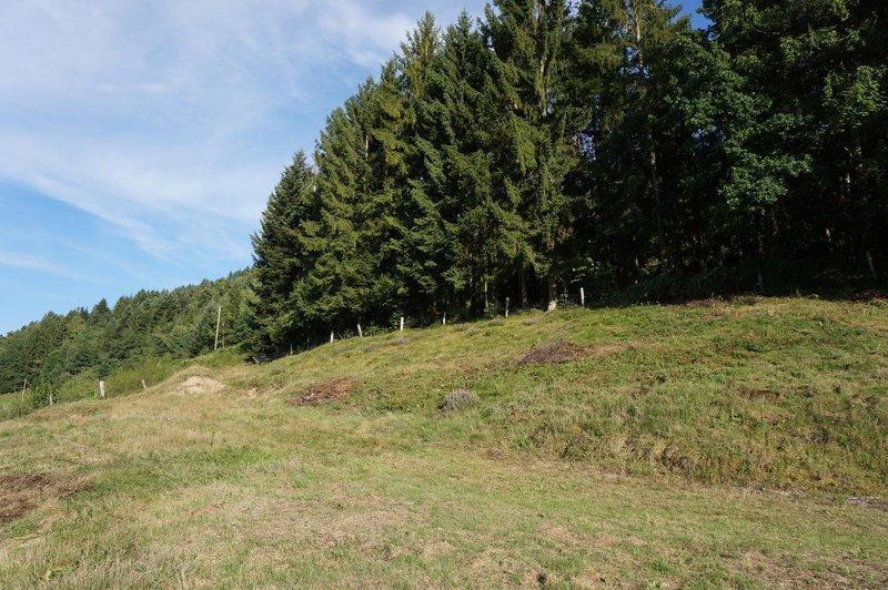 Terrain Non Constructible En Vente Dommartin Les Remiremont 1