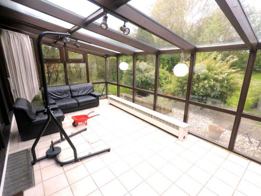 haus kaufen 20 zimmer 382 m² trierweiler foto 5