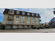 Apartment for rent 1 bedroom in Dudelange - Ref. 7334257