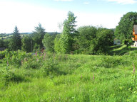 Terrain constructible à vendre à Raon-aux-Bois - Réf. 6122353