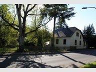 Einfamilienhaus zum Kauf 5 Zimmer in Daleiden - Ref. 7221105