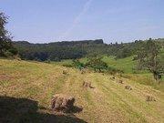Terrain constructible à louer à Ersange - Réf. 2994817