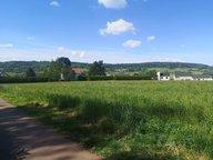 Terrain constructible à vendre à Gorcy - Réf. 6855297