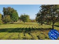 Terrain constructible à vendre à Gerbécourt - Réf. 6983825