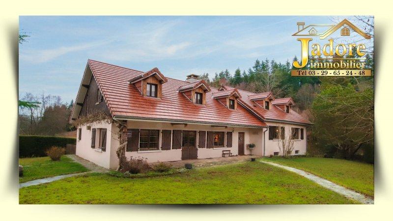 acheter maison 9 pièces 285 m² bruyères photo 1