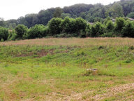 Terrain constructible à vendre à Raon-aux-Bois - Réf. 6067617