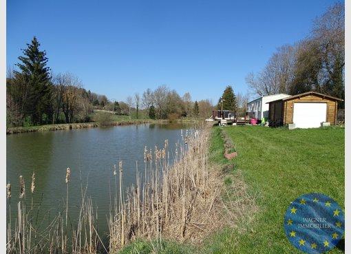 Terrain non constructible à vendre à Blâmont (FR) - Réf. 7157921