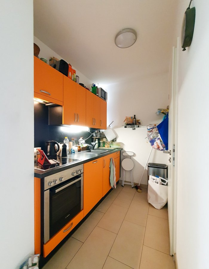 acheter studio 0 chambre 34.82 m² belval photo 5