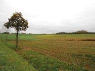 Terrain constructible à vendre à Landres - Réf. 5516705