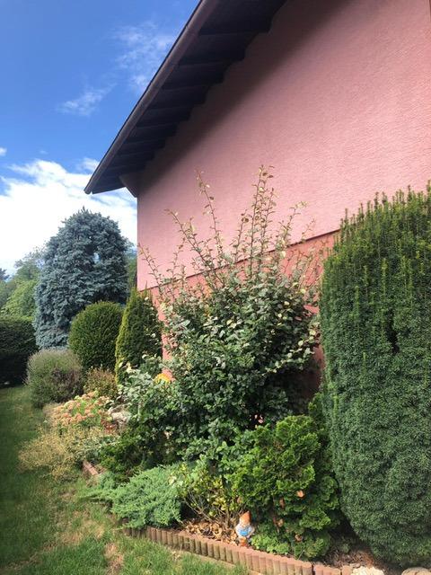 acheter maison 0 pièce 100 m² saint-louis photo 6
