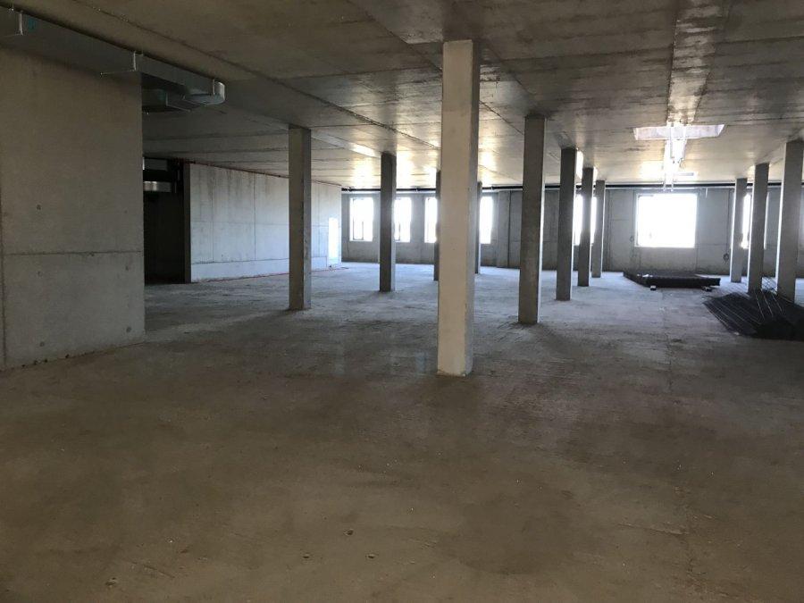 retail for rent 0 bedroom 954 m² leudelange photo 3