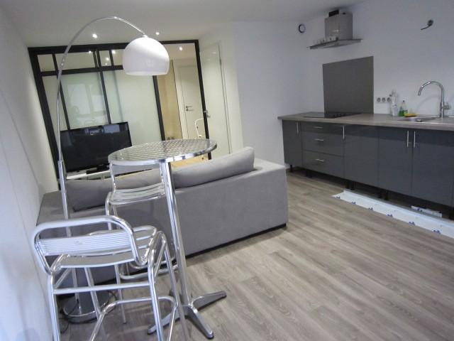 louer appartement 2 pièces 40 m² nancy photo 2