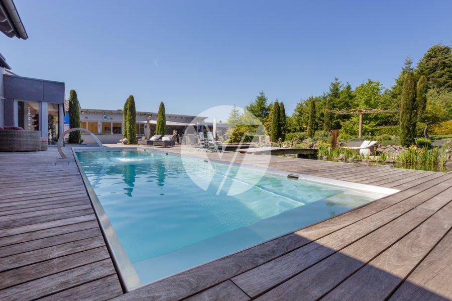 haus kaufen 10 zimmer 390 m² schweich foto 7