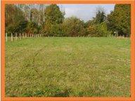 Terrain à vendre à Château-du-Loir - Réf. 4871105