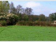 Building land for sale in Mersch - Ref. 6726593