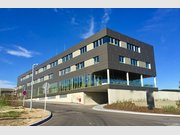 Bureau à louer à Mensdorf - Réf. 5969601