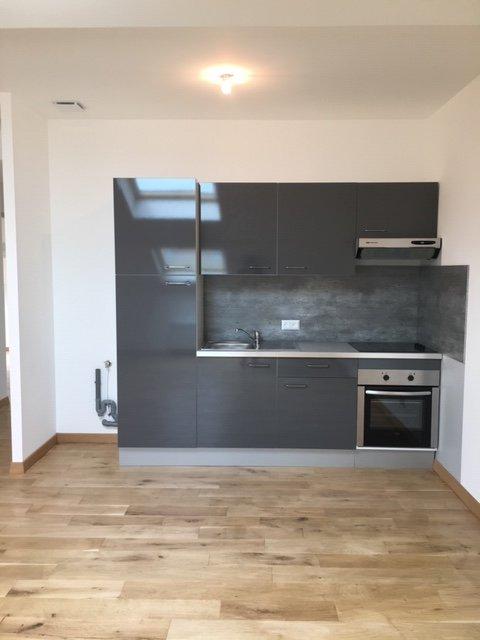 louer appartement 3 pièces 48 m² nancy photo 1