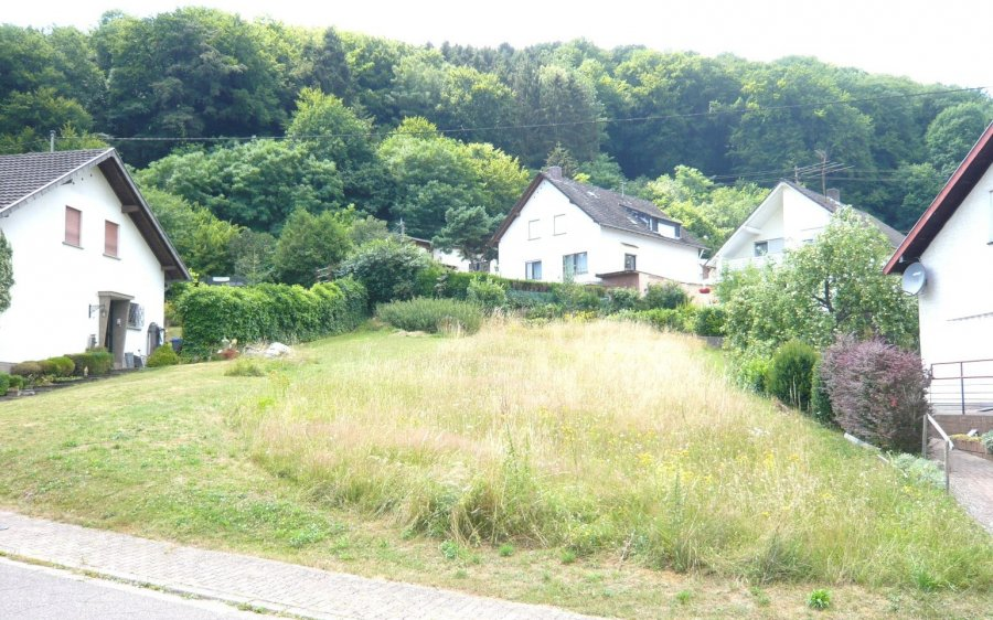 building land for buy 0 room 0 m² beckingen photo 1