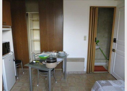 location appartement f1 nancy meurthe et moselle r f 5591249. Black Bedroom Furniture Sets. Home Design Ideas
