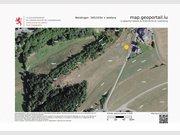 Non building land for rent in Weidingen - Ref. 4851409