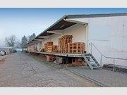 Halle zur Miete in Mehring - Ref. 5002961