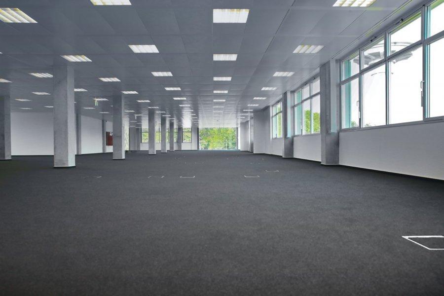 büro mieten 0 schlafzimmer 410 m² contern foto 4