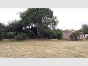 Terrain constructible à vendre à Sainte-Foy - Réf. 5331409
