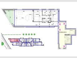 Appartement à vendre 2 Chambres à Binsfeld - Réf. 6650577