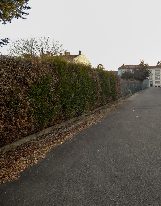 renditeobjekt kaufen 0 zimmer 265 m² bouzonville foto 3
