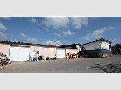 Entrepôt à louer à Luxembourg-Merl - Réf. 6006497