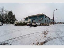 Bureau à louer à Roodt-Sur-Syre (Muensbach) - Réf. 7109089