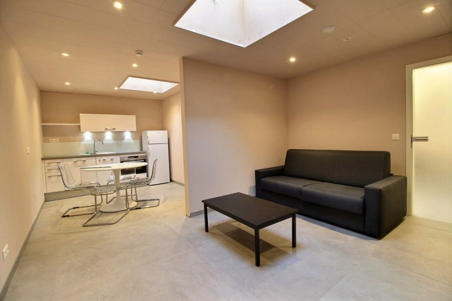 acheter local commercial 0 pièce 131 m² libramont-chevigny photo 6
