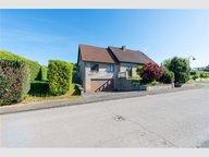 Maison à vendre 4 Chambres à Erpeldange (Ettelbruck) - Réf. 6760194