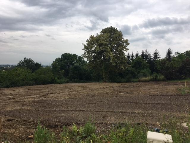 acheter terrain constructible 0 pièce 0 m² thionville photo 3