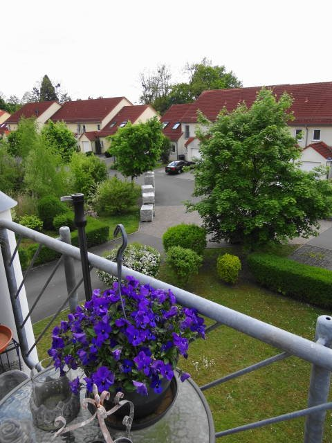 wohnung kaufen 2 zimmer 50 m² saarbrücken foto 6
