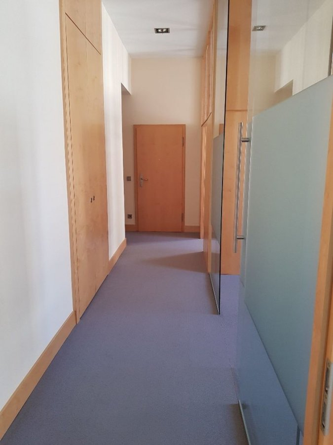 office for rent 0 bedroom 100 m² luxembourg photo 4