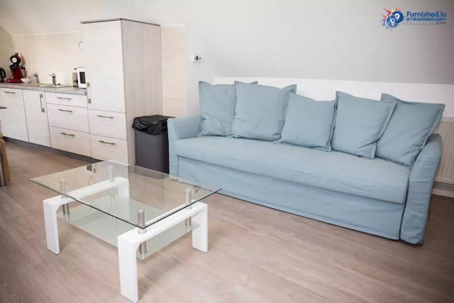 louer appartement 1 chambre 50 m² luxembourg photo 3
