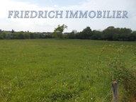 Terrain constructible à vendre à Combles-en-Barrois - Réf. 7254562